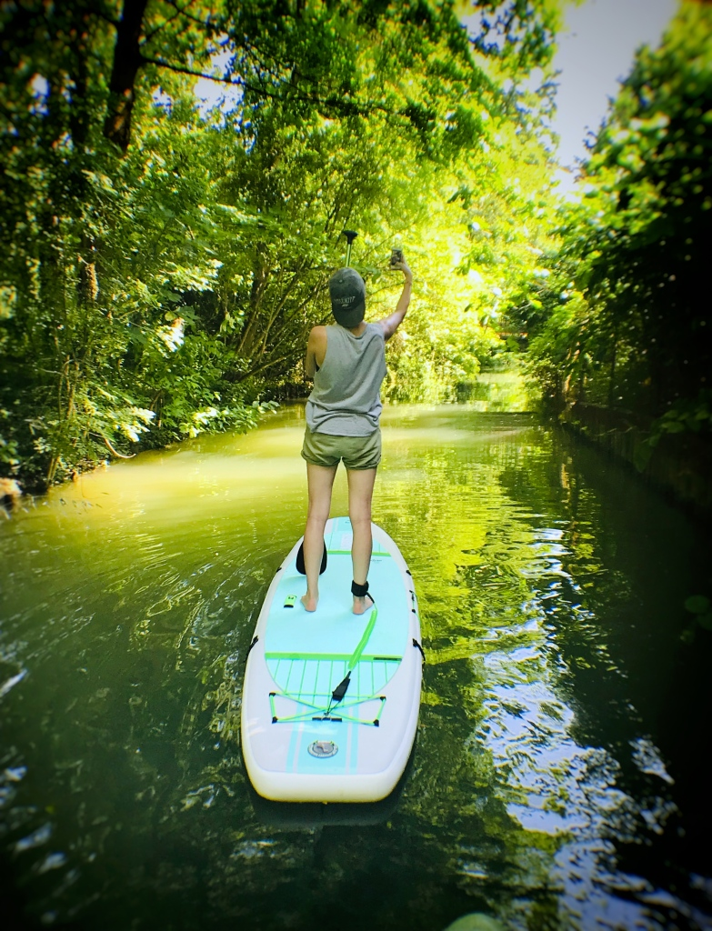 Un petit air de jungle luxuriante, dans les bras de Marne qui traversent l'île Sainte-Catherine, à Créteil, dans le Val-de-Marne.